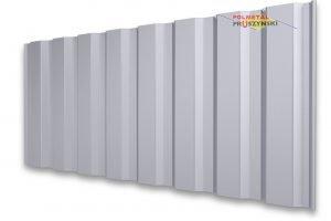 Trapezblech T20M Wand