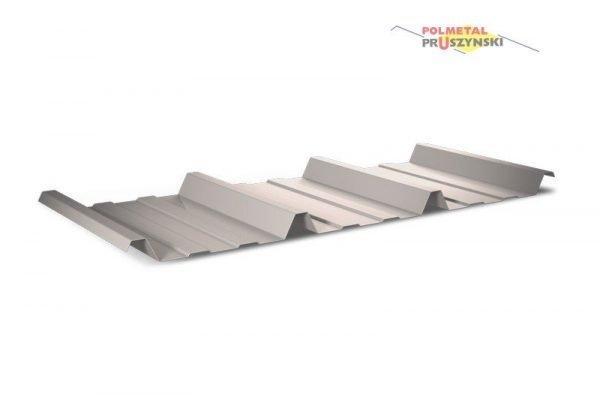Trapezblech T45P Dach