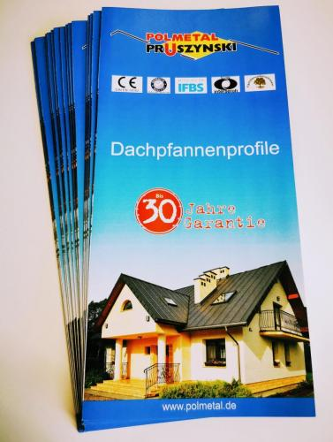 M6 Dachpfannenprofile Flyer
